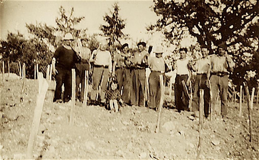 Histoire de famille du vignoble du Domaine du Siorac