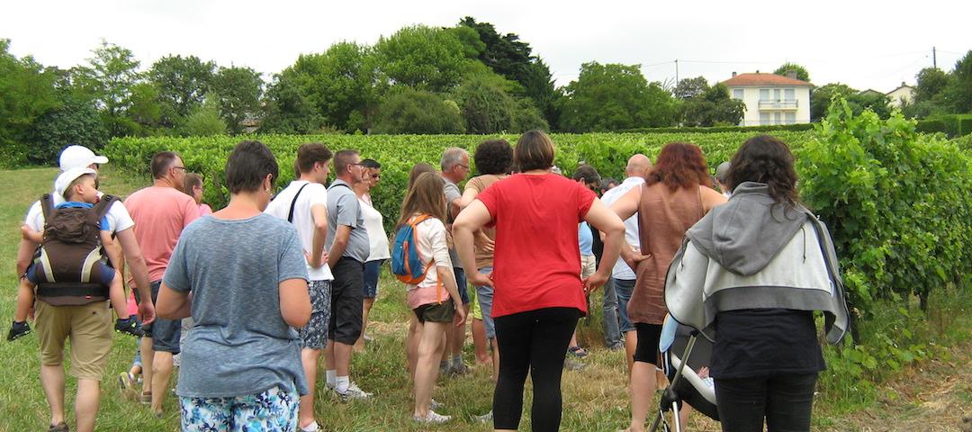 Visite guidée de notre vignoble (vignes, chais, celliers) et dégustation de nos vins AOC Bergerac - Tourisme et Oenotourisme