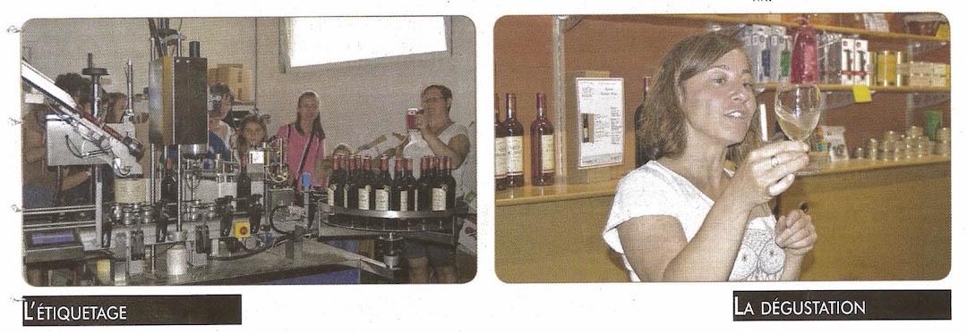 Article de presse visite d'un vignoble AOC Bergerac