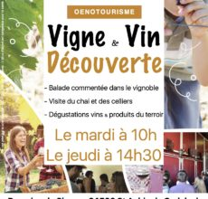 Vigne et vin découverte Domaine du Siorac