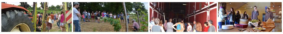visite vignoble bergerac au Domaine du Siorac en Périgord