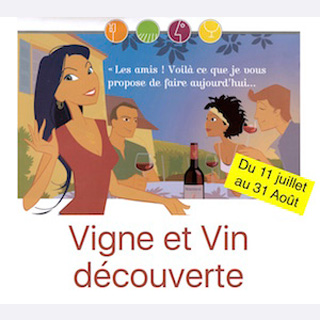 Vigne et Vin Découverte visite commentée du vignoble et dégustation