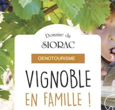 activités en famille dans le vignoble de bergerac