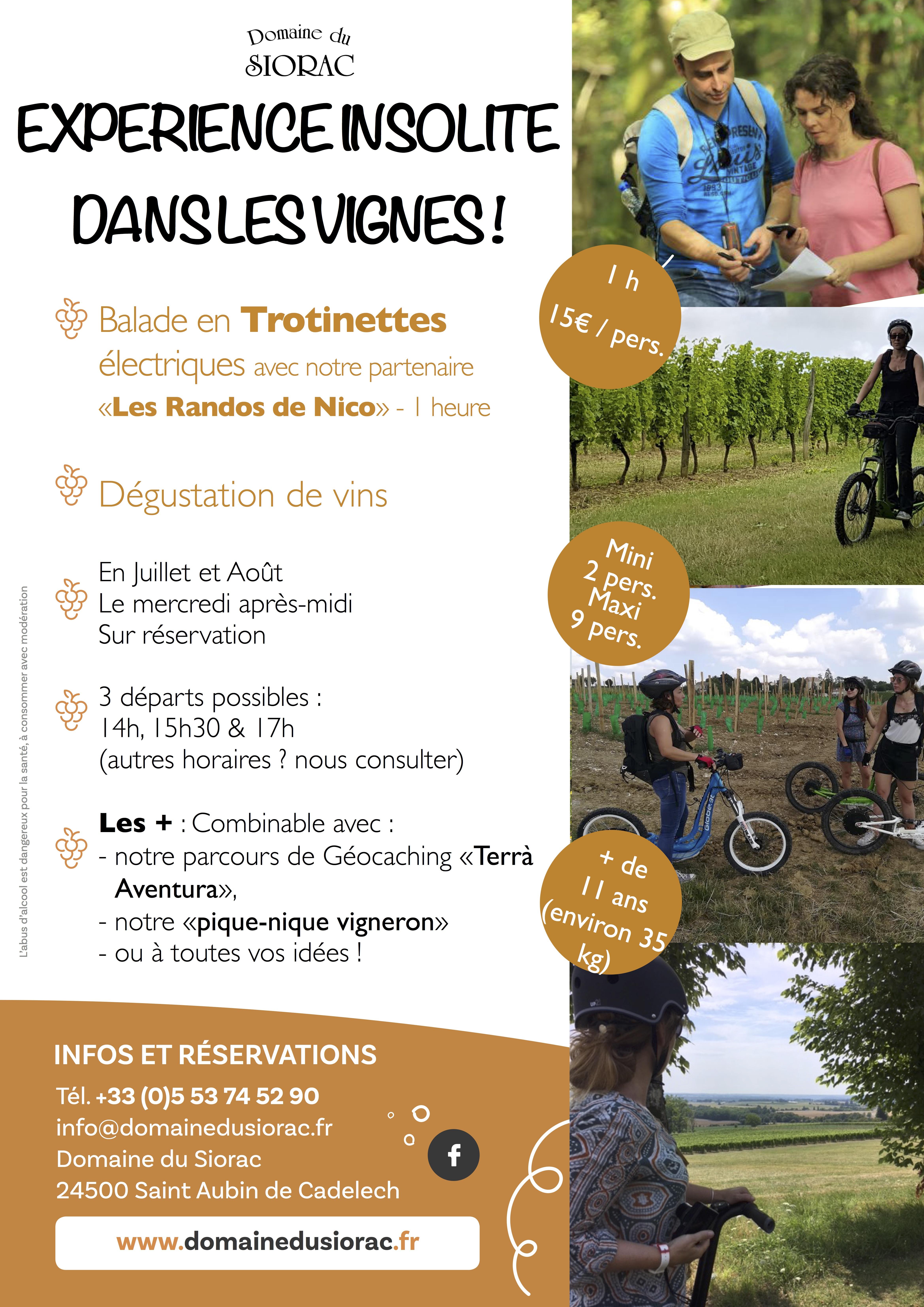 trottinettes électriques dans les vignes sur la routes des vins de Bergerac Duras