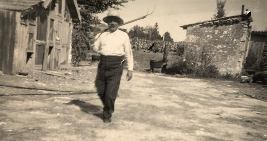 Vigneron et paysan des métiers de génération en génération au Domaine du Siorac