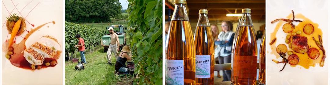 Le Verjus du Périgord est un produit utilisé en cuisine par les particuliers, restaurateurs et professionnels de l'industrie agro-alimentaire.
