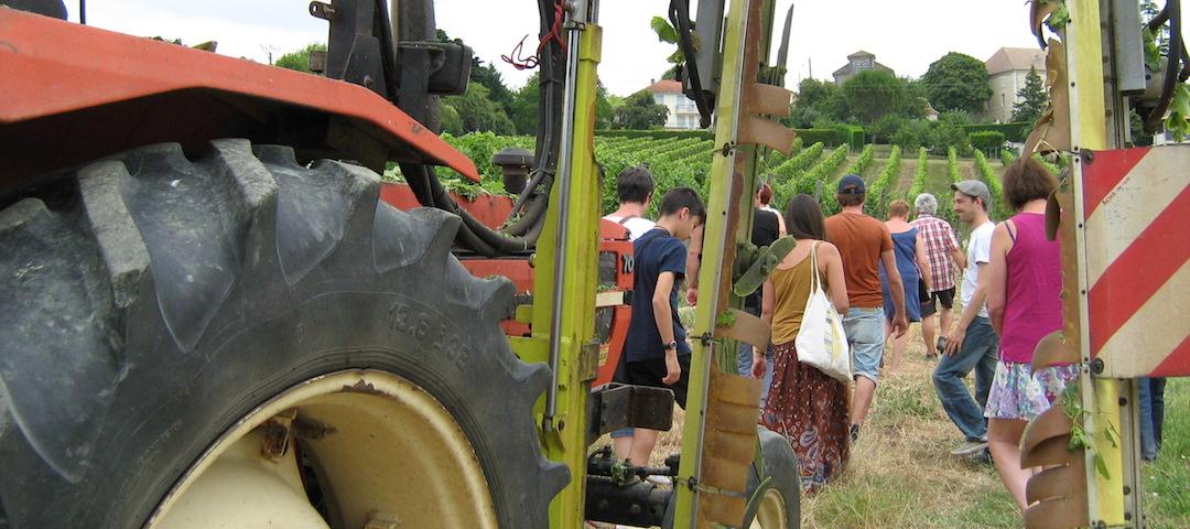 Visite guidée du vignoble et découverte du metier de vigneron - vins AOC Bergerac - Tourisme et Oenotoursime
