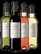 Vins AOC Bergerac Rouge, Blanc Sec, Rosé et Blanc Moelleux Domaine du SIorac