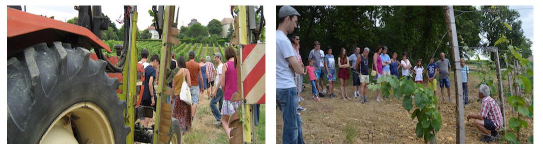 Visite Domaine du Siorac - Sélection de la Route des Vins